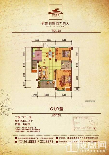 中南海湾C1户型图8栋