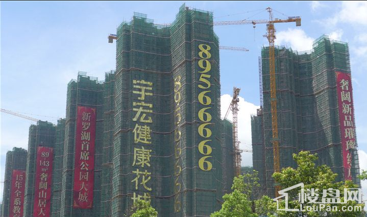 宇宏·健康花城实景图