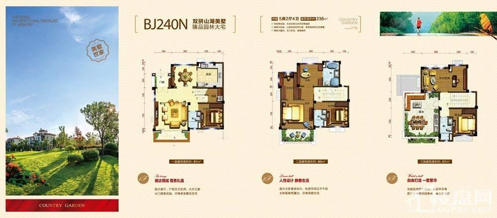 廉江碧桂园别墅bj260s户型户型图-湛江楼盘网