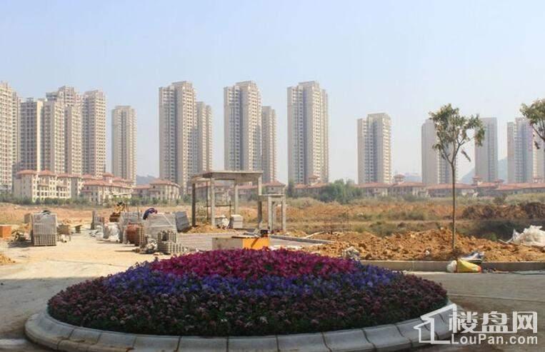 锦河湾实景图