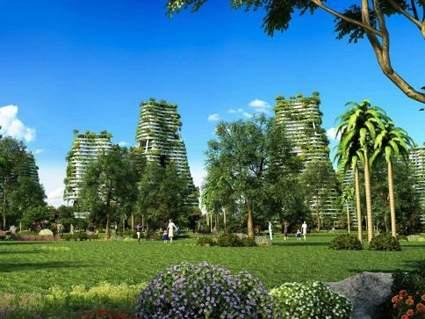 碧桂园·森林城市实景图
