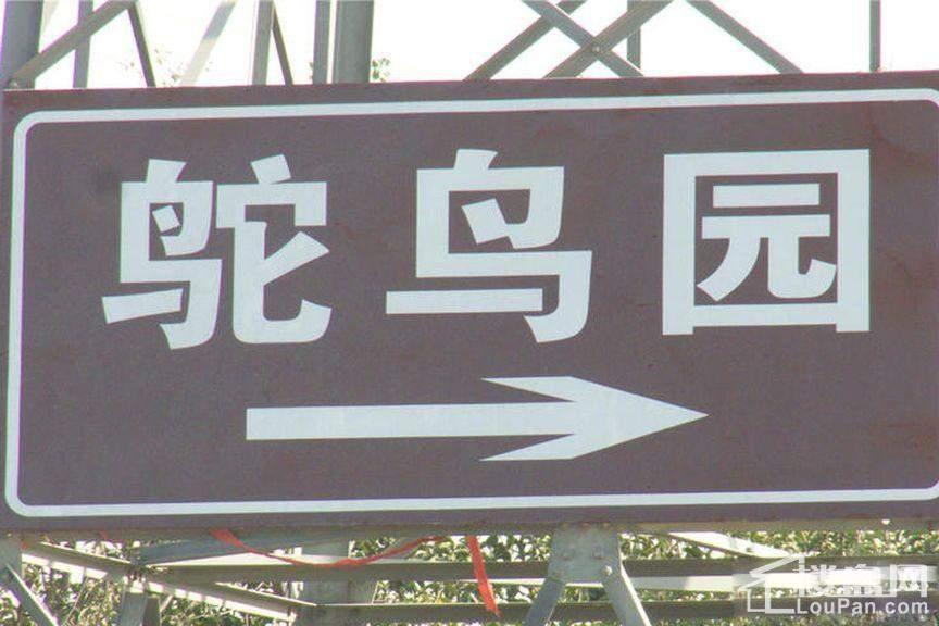 中建观湖国际配套图
