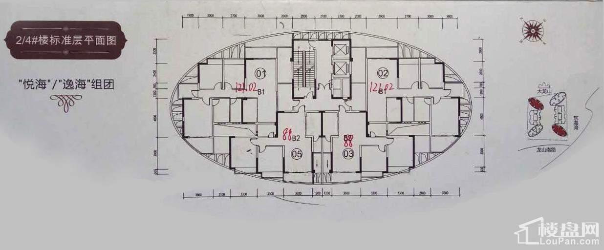 2#/4#楼平面图