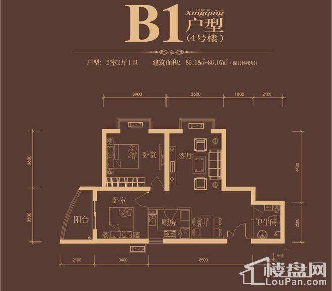 4#B1户型