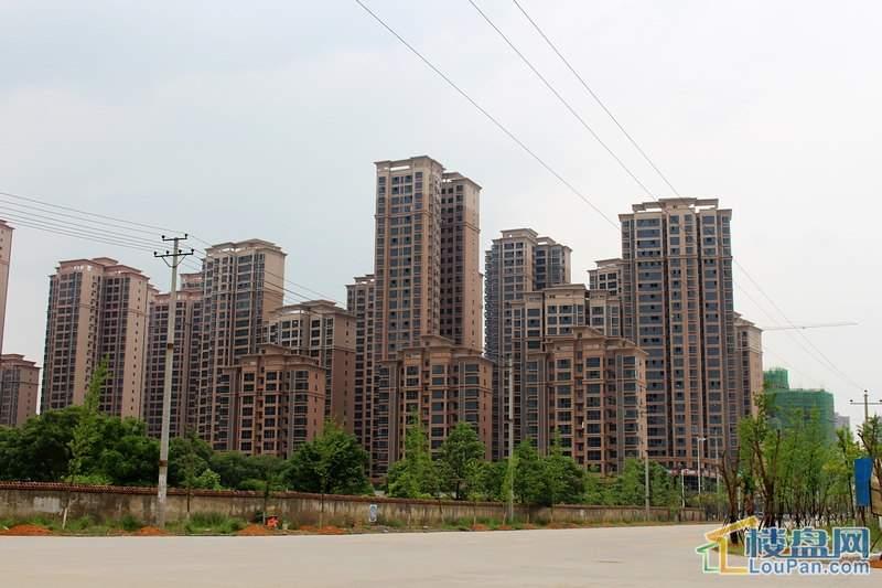 中央新城实景图