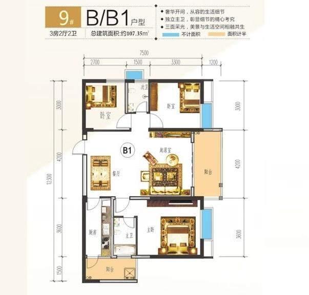 中央海洋公园9#楼B、B1户型