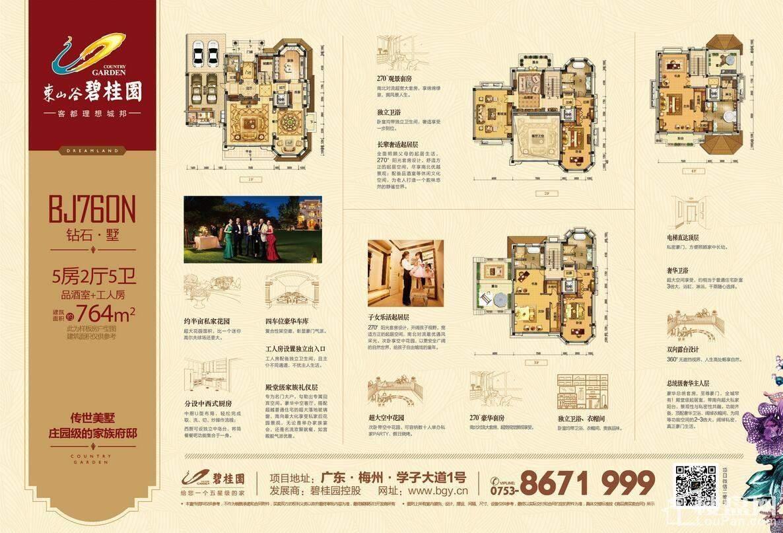 東山谷·碧桂园户型图