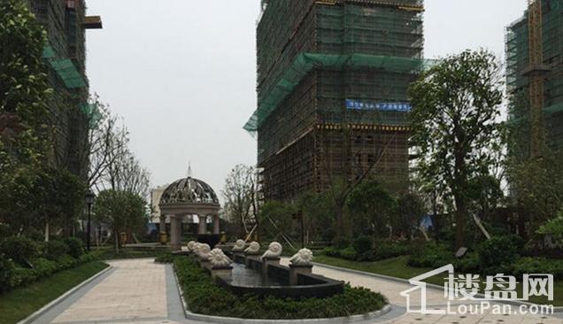 佳源上海小城实景图