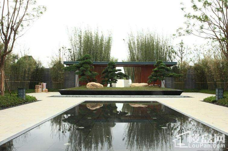 嘉兴新西塘孔雀城实景图