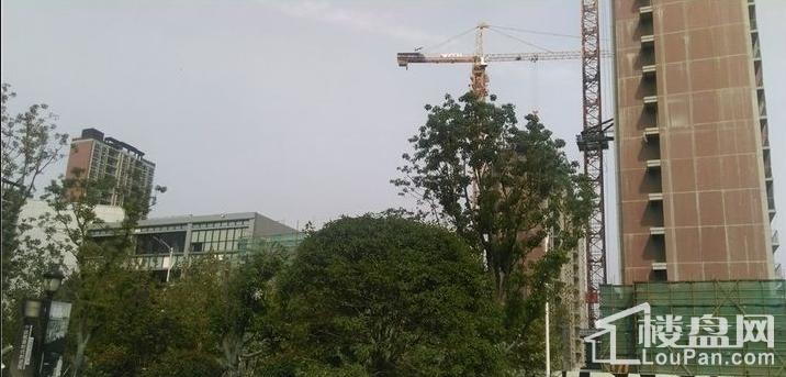万科翡翠公园实景图