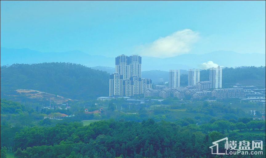 金地香山湖 实景图