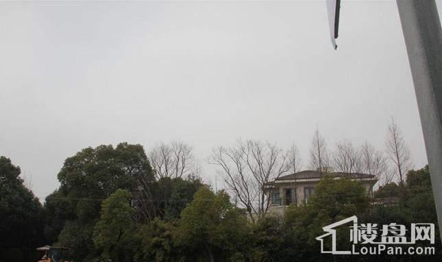 毕加索花园小镇实景图