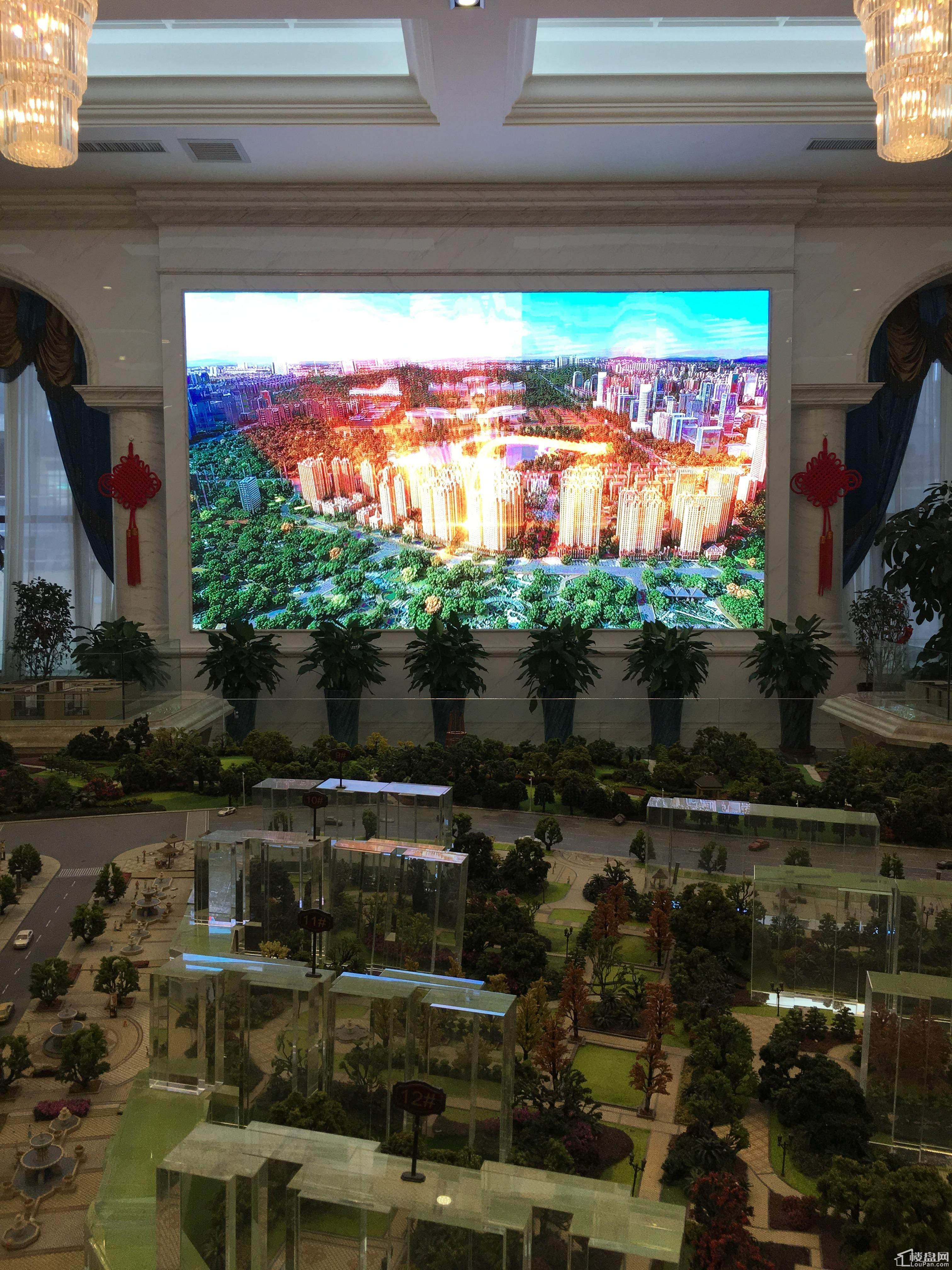 丽景·中央城实景图