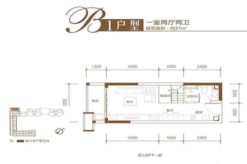 B1户型1层