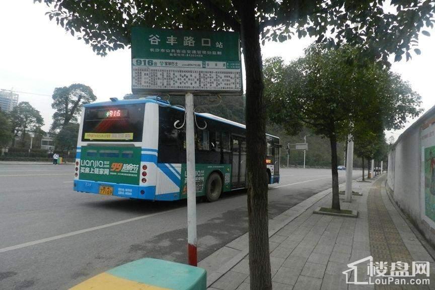 广泰锦苑周边站牌