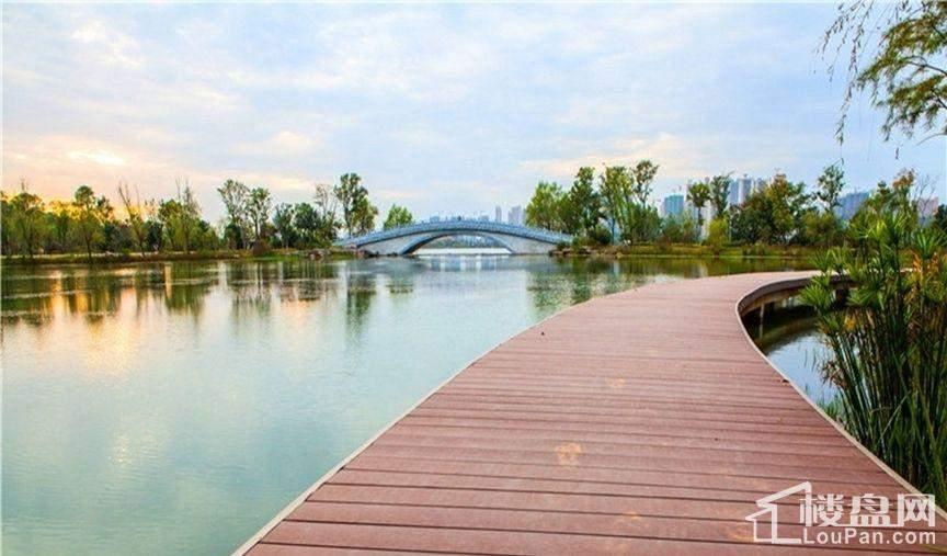周边梅溪湖观光道