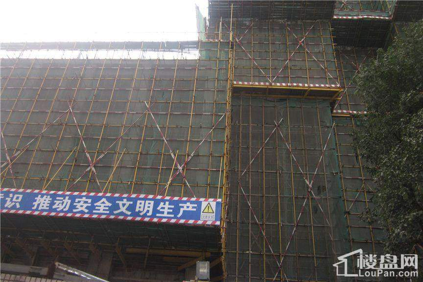 众东国际项目工程进度