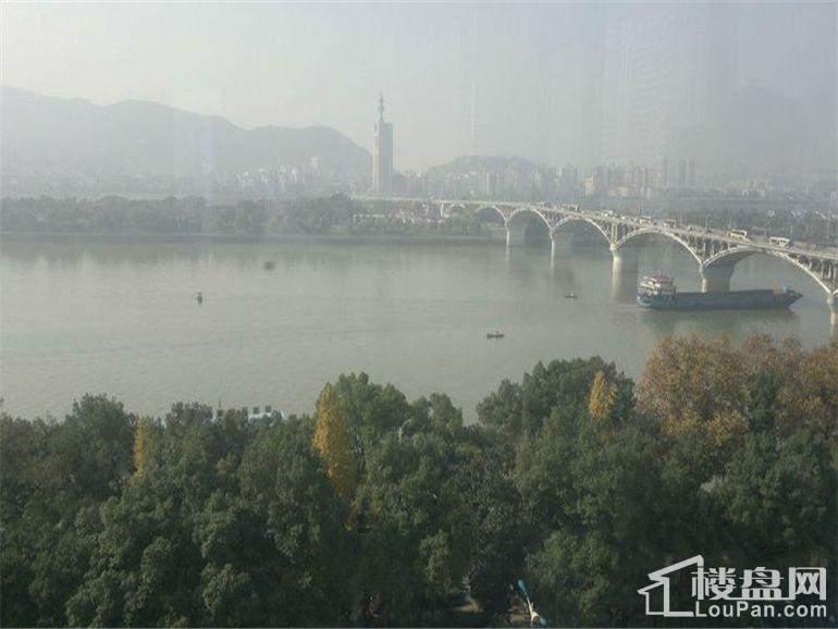 江与城周边绿化