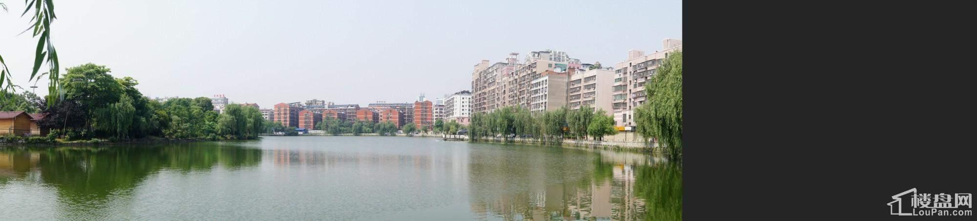 东湖阳光实景图