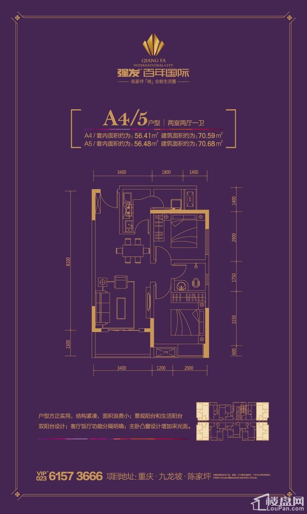 强发百年国际A4/5户型