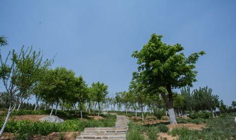 中海御山首府配套图