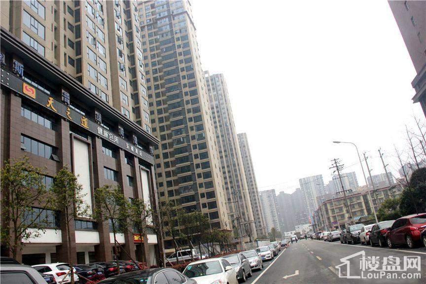 东城港 实景图