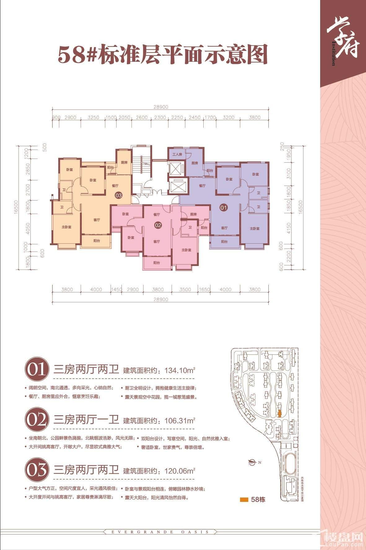 南宁恒大绿洲3期58#标准层平面图