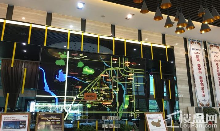 蓝光星华·海悦城实景图