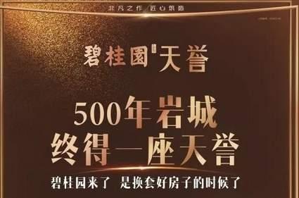 大田碧桂园天誉效果图