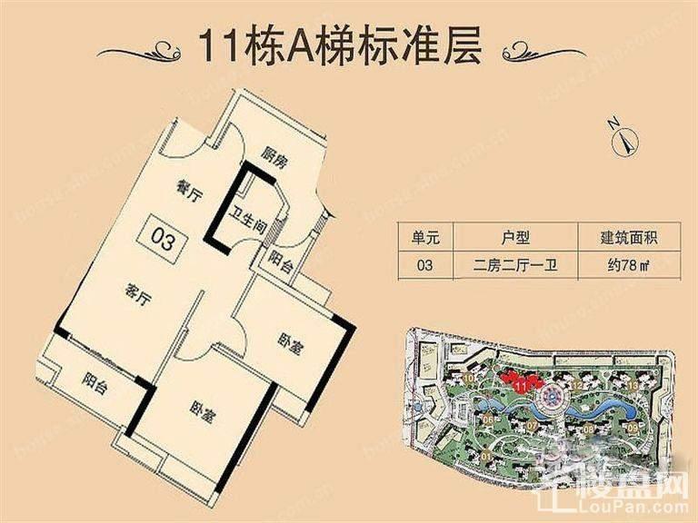 11栋A梯标准层
