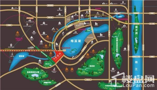 金茂湾位置图