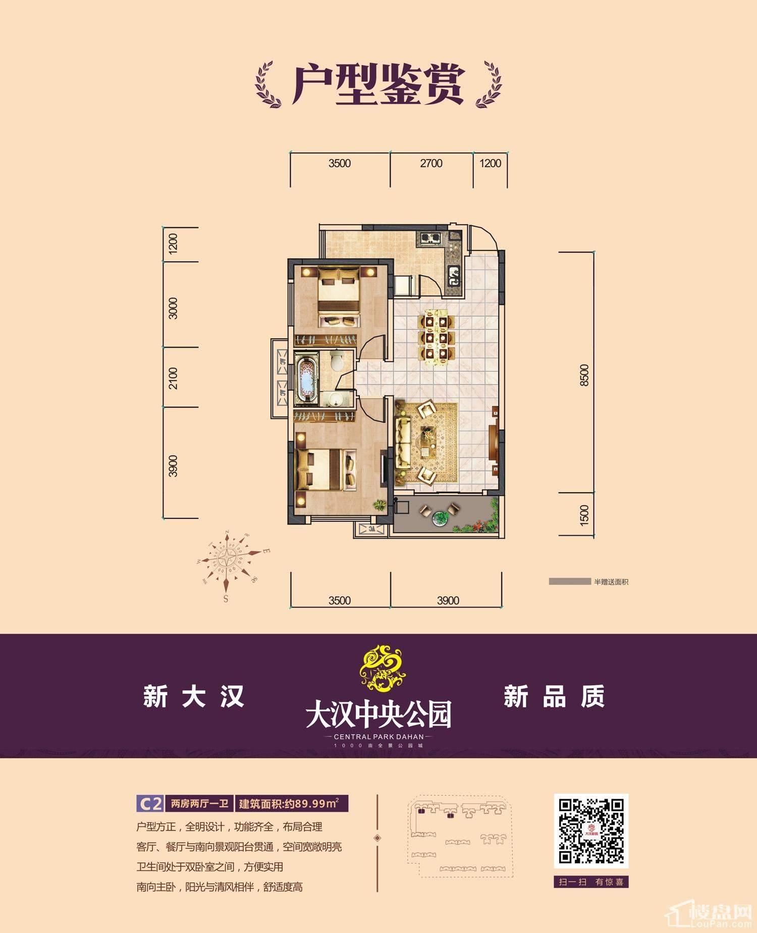 大汉新城3期C2户型图