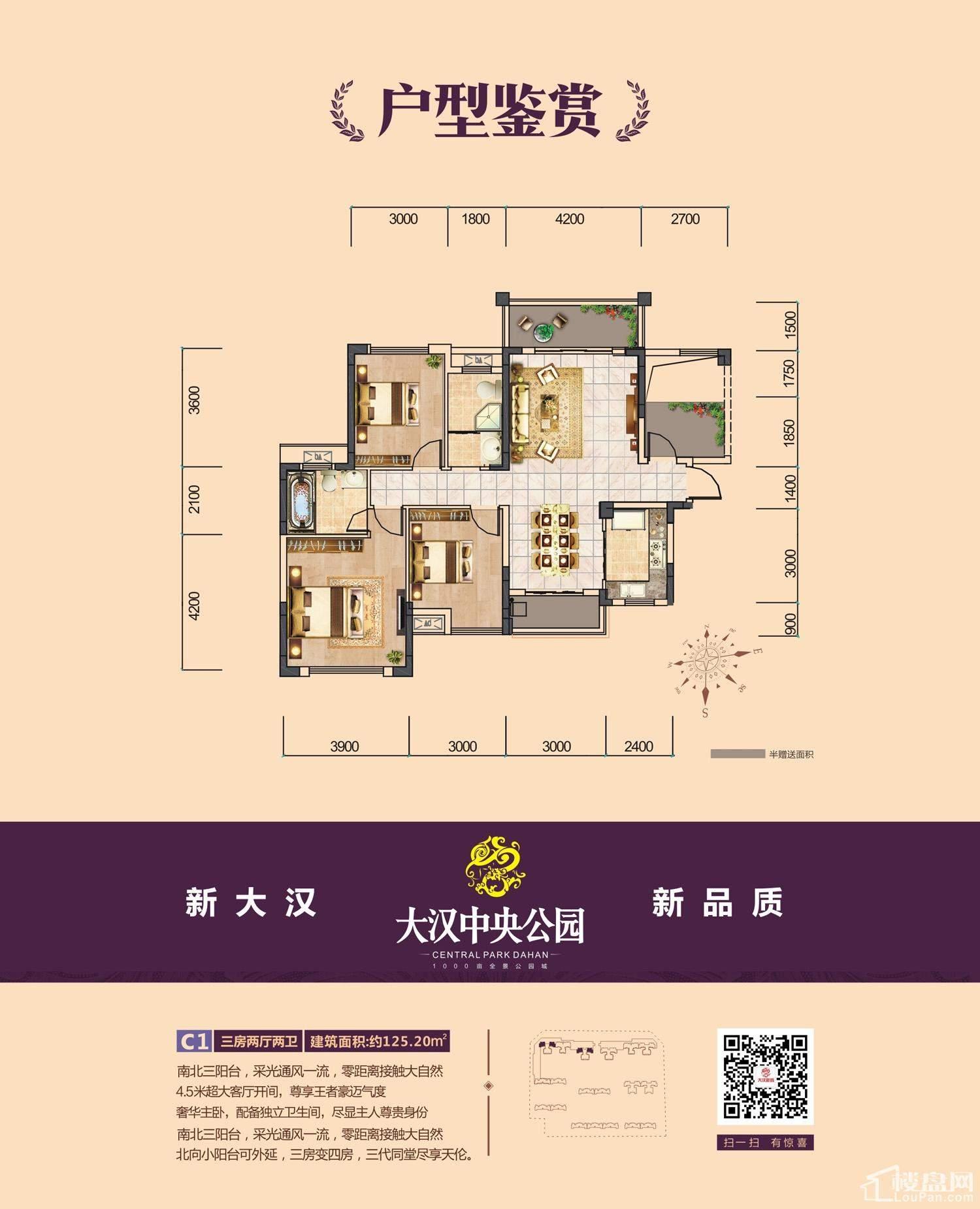 大汉新城3期C1户型图
