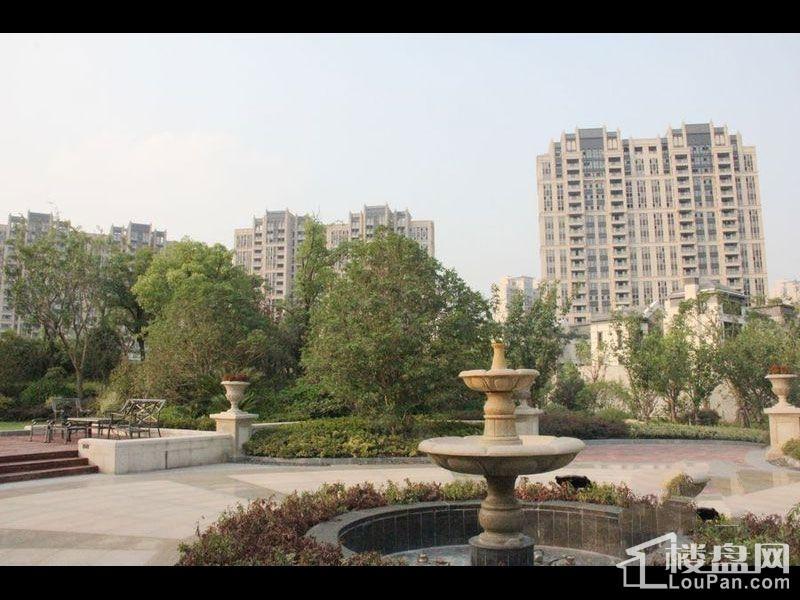 华润中央公园实景图