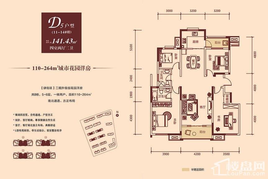 11-14#洋房D5户型