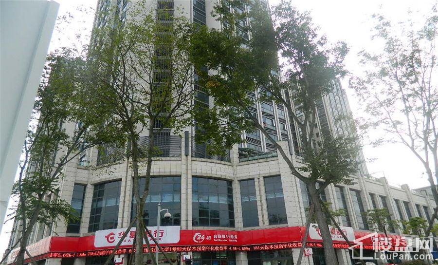 樊华广场实景图