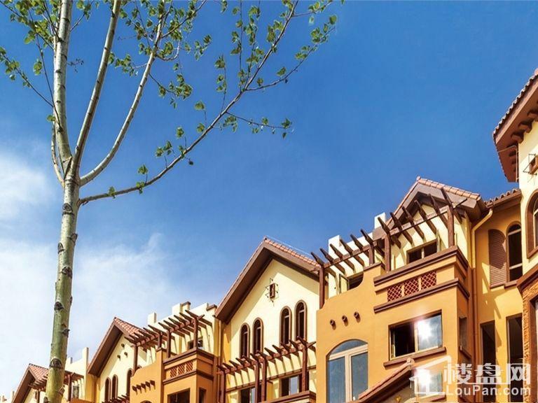 兰亭·御湖城东区实景图