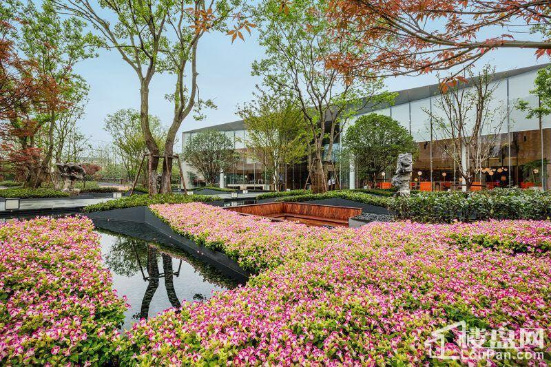 仁恒公园世纪实景图