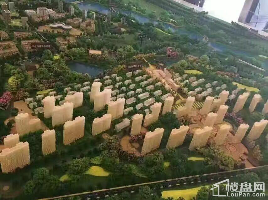 涿州《孔雀城》实景图