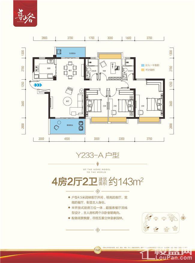 Y233-A户型
