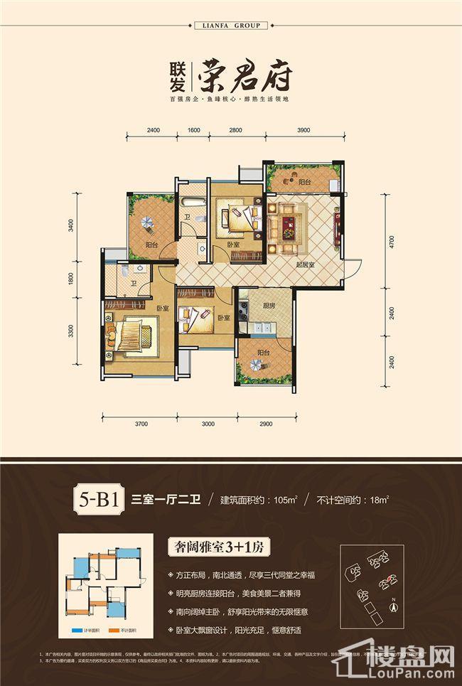 5-B1户型