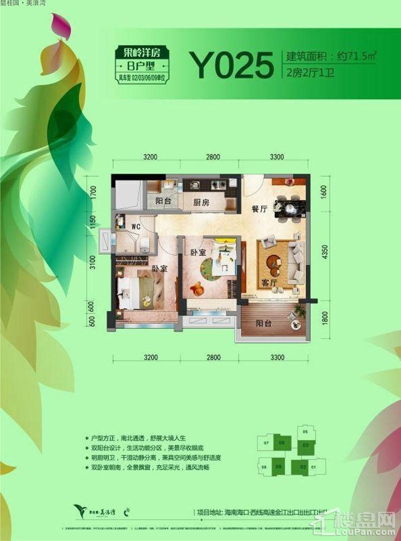 碧桂园美浪湾B-Y205户型