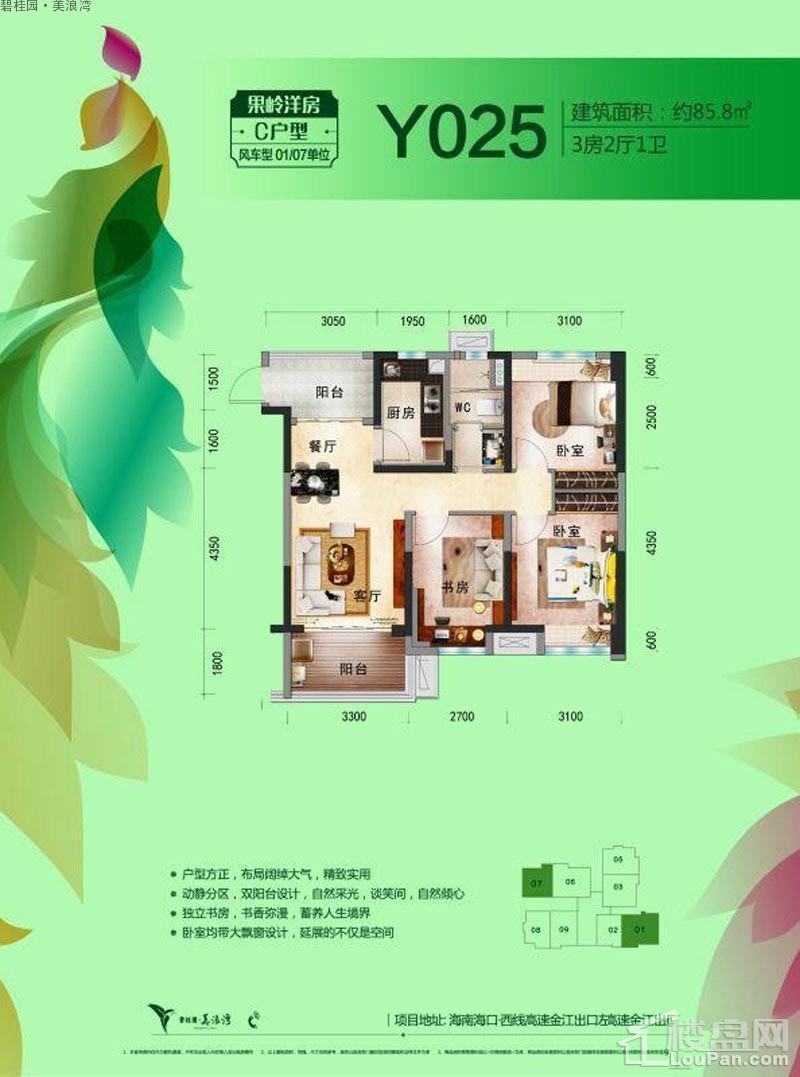 碧桂园美浪湾C-Y205户型