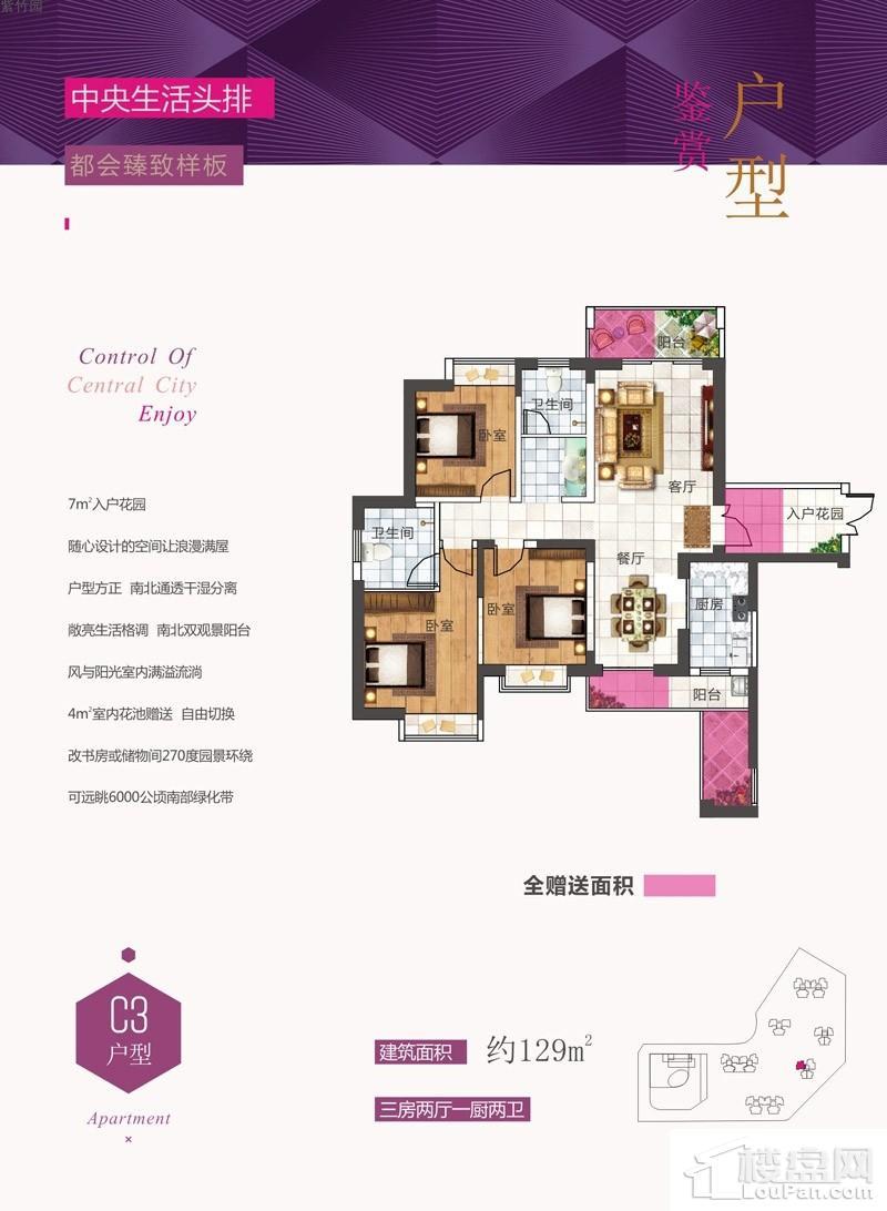 紫竹园C3户型图