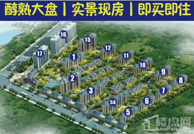 恺鑫·橄榄城效果图