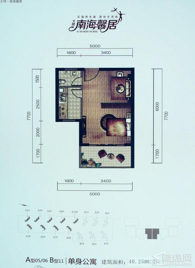 大同南海馨居A-05/06;B11单身公寓户型图