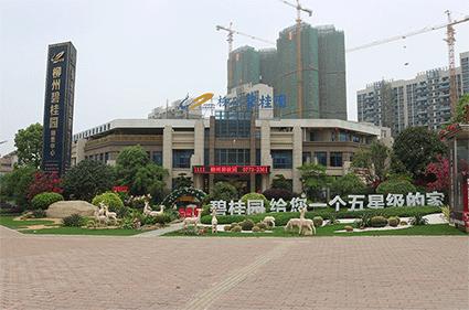 柳州碧桂园实景图