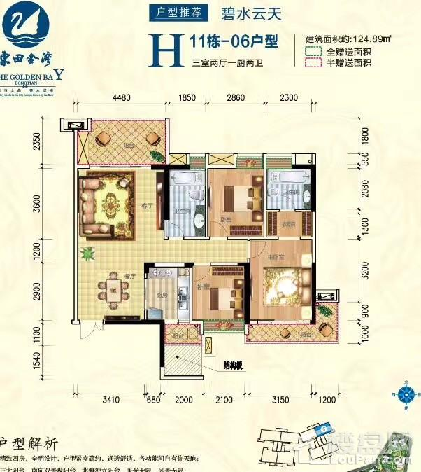 东田金湾H11栋06号户型