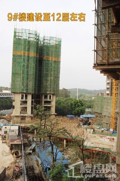9#楼建设至12层左右(摄于2017.4.21)