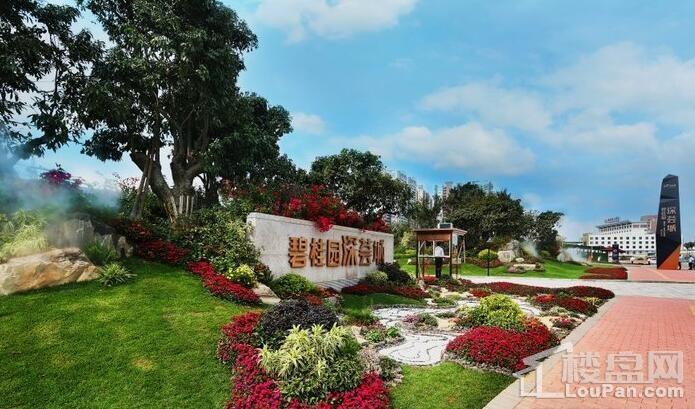 碧桂园深荟城实景图
